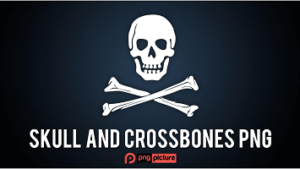 skull and crossbones png